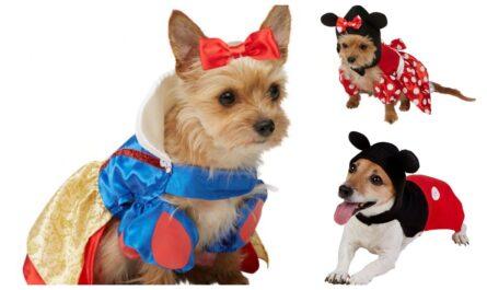disney hundekostumer, disney kostumer til hunde, disney tøj til hunde, disney tøj til kæledyr, sjove hundekostumer til små hunde, disney hundegaver