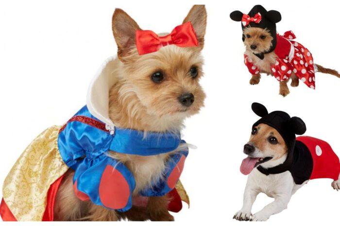 Disney hundekostumer